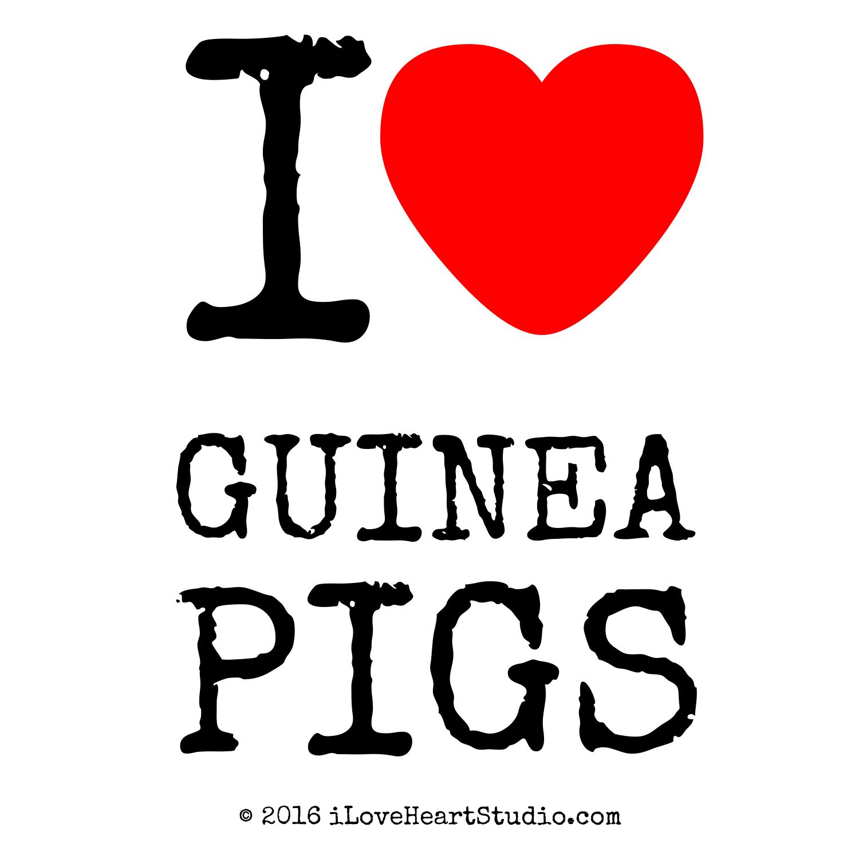 http://www.iloveheartstudio.com/_cat/1500/animals/wild-animals/rodents/guinea-pigs.png