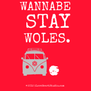 Wannabe stay woles.  [Campervan] .